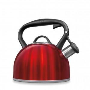 Stainless 2 quart kettle